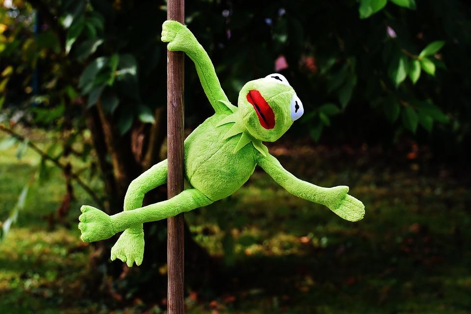 kermit dancing